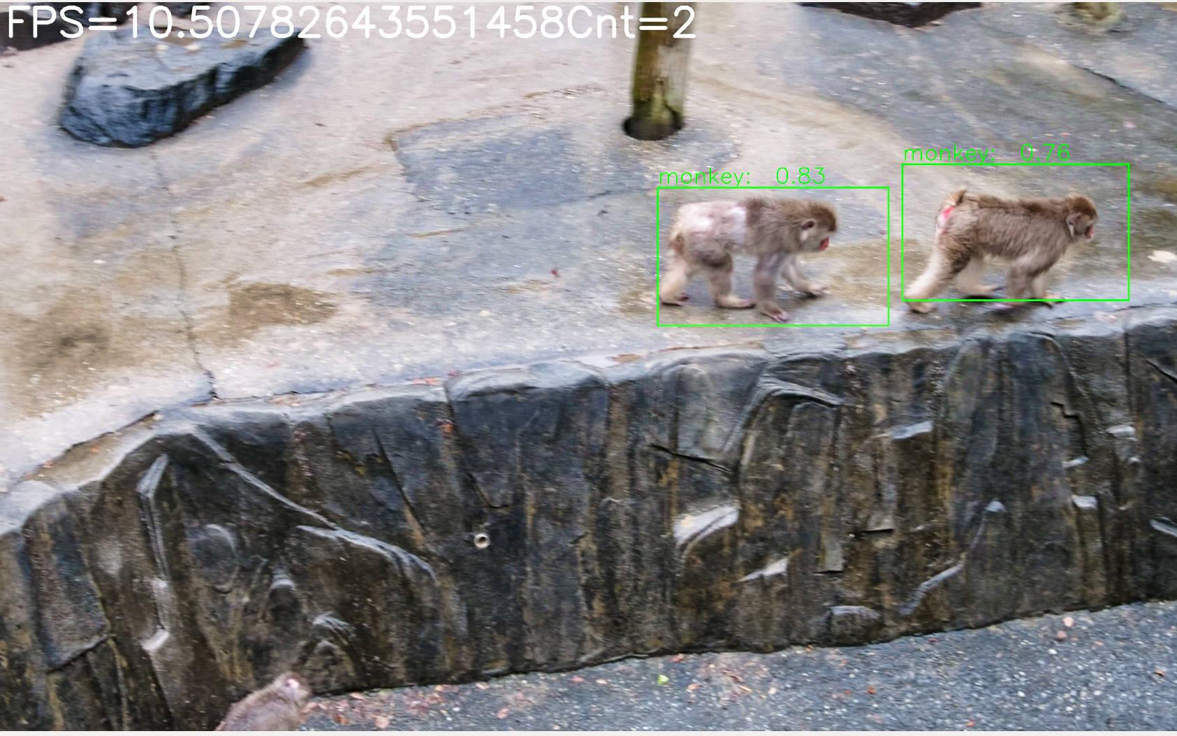 ニホンザルの画像認識率で80%を達成。 <br/>国際高専2年生がAIを用いた獣害対策システムの開発に取り組む